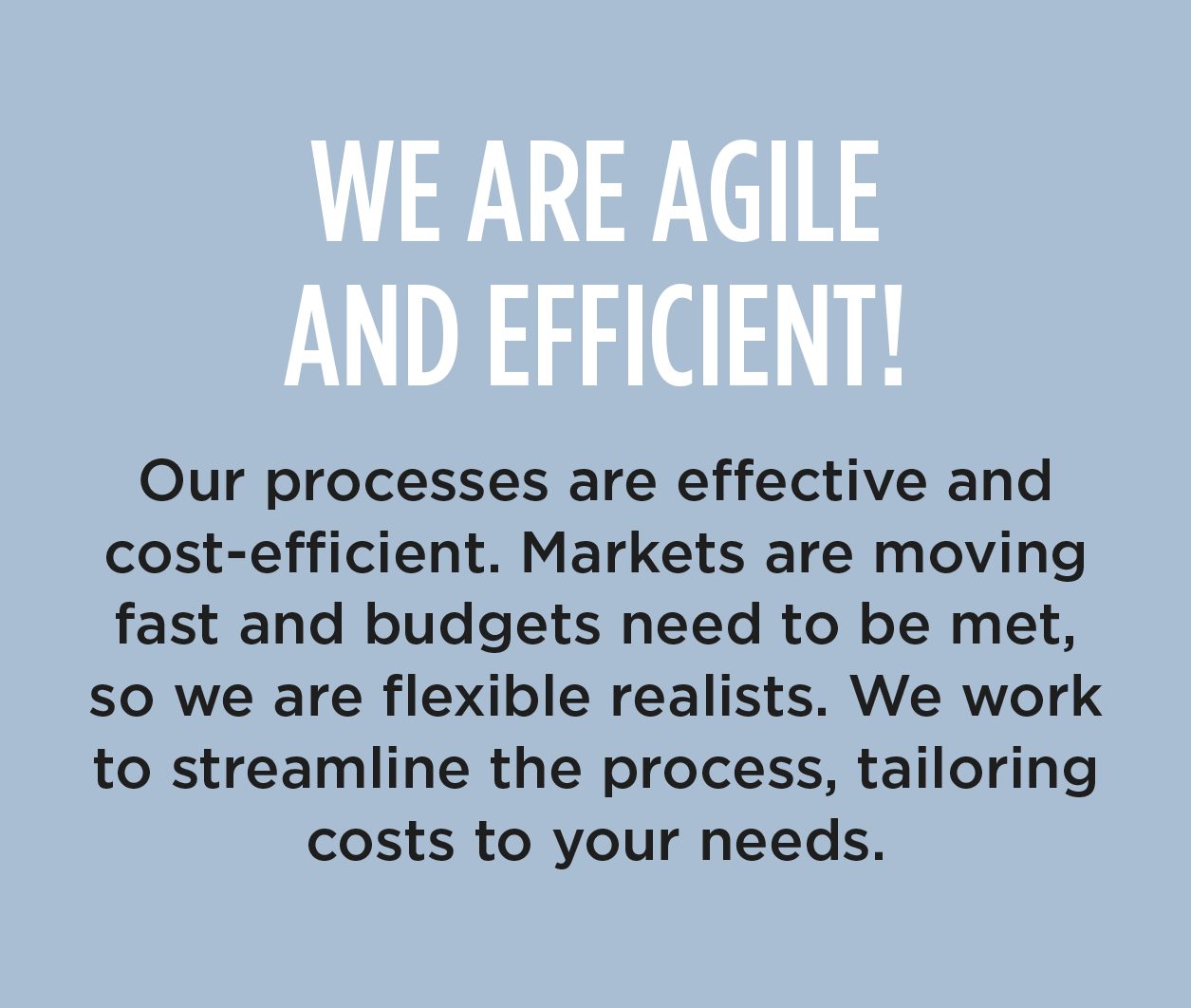 WE ARE AGILE AND EFFICIENT! - Our processes are effective and cost-efficient. Markets are moving fast and budgets need to be met, so we are flexible realists. We work to streamline the process, tailoring costs to your needs.